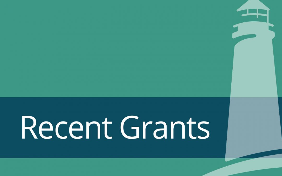 Recent Grants Support Diversity, Equity, and Inclusion